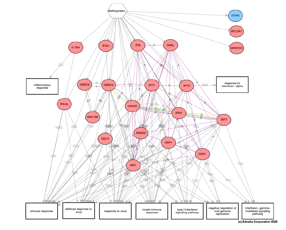 Image of an example pathway analysis result