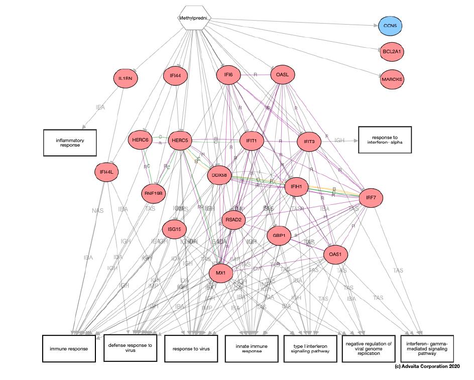 pathway analysis illustration